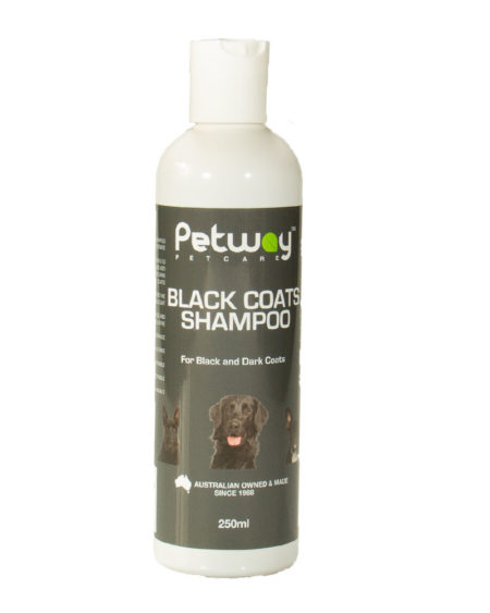 PETWAY 250 ML SHAMPOO BLACK COATS