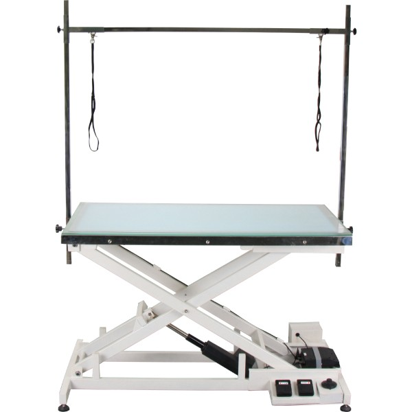 AEOLUS OPERATION/GROOMING ELECTRIC LIFT TABLE WITH LED LIGHTS